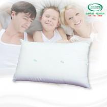 【剋菌寶】防蟎抗菌舒眠枕(1顆)