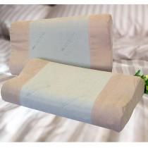 【Victoria】抗菌活性碳工學記憶枕(2顆)