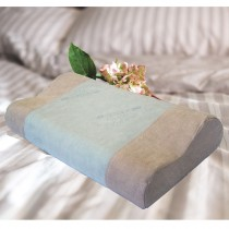 【Victoria】抗菌活性碳工學記憶枕(一顆)