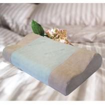 【Victoria】抗菌活性碳工學記憶枕(買一送一)