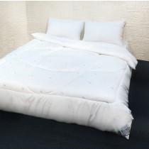 【剋菌寶】超值組!!防蹣抗菌舒眠被-雙人 + 剋菌寶防蹣抗菌舒眠枕x2個