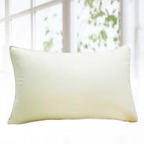 【FITNESS】日本進口纖維 吸溼快乾枕(1顆)